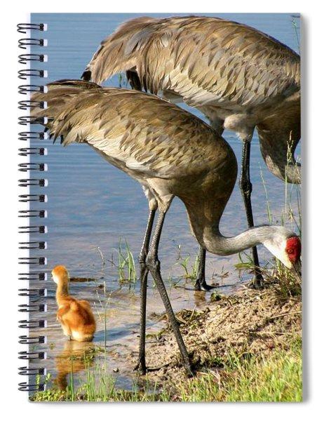 Enjoying The Water Spiral Notebook