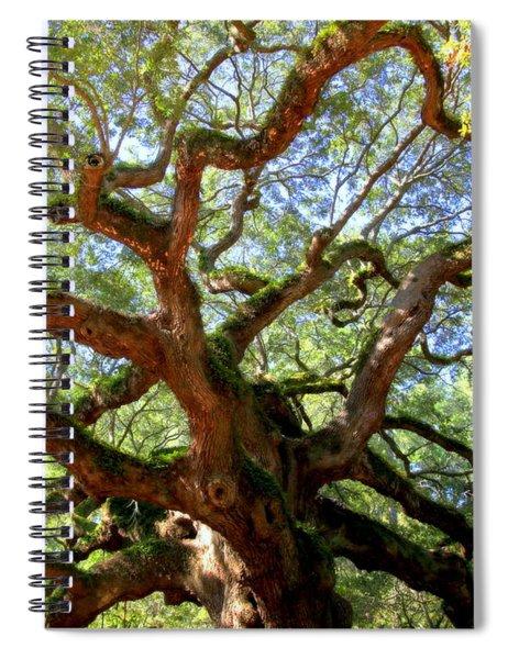 Entangled Beauty Spiral Notebook
