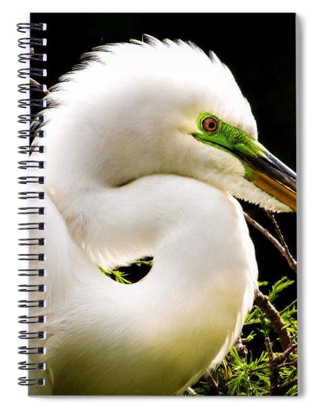 Essence Of Beauty Spiral Notebook