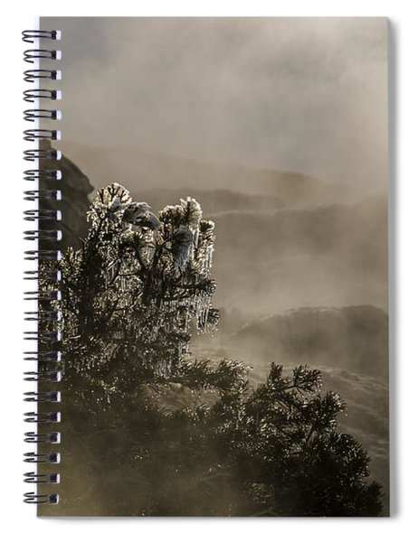 Ethereal Beauty Spiral Notebook