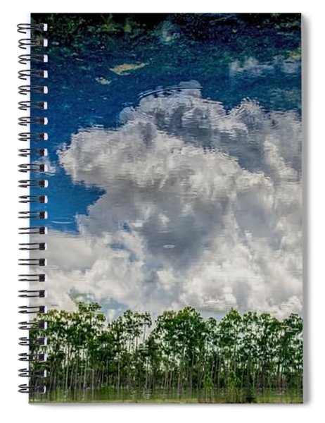 Reflected Everglades 0203 Spiral Notebook