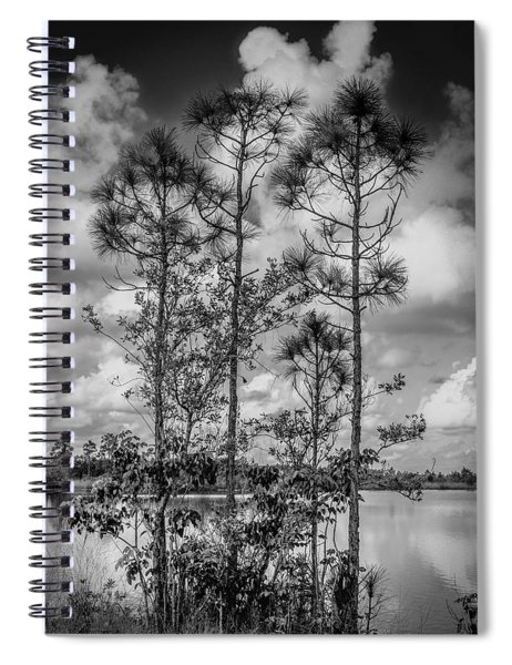 Everglades 0336bw Spiral Notebook