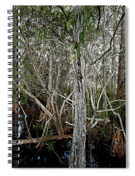 Everglades Swamp-1 Spiral Notebook