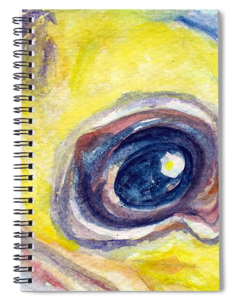 Eye Of Pelican Spiral Notebook
