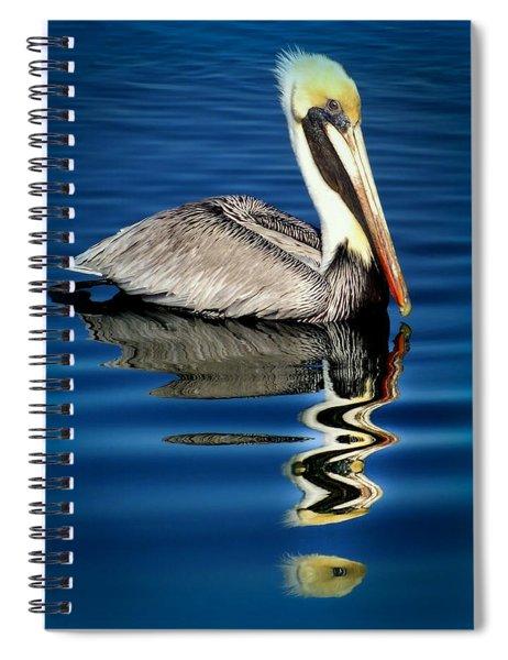 Eye Of Reflection Spiral Notebook