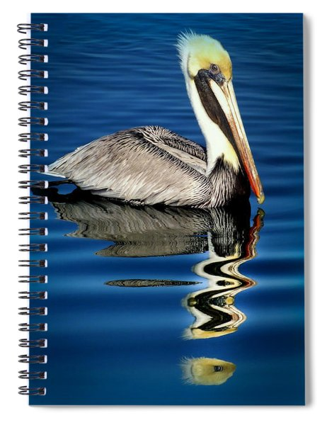 Eye Of Reflection Spiral Notebook
