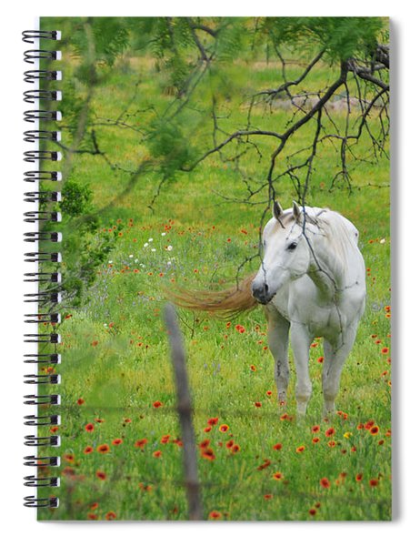 Eye On Beauty Spiral Notebook