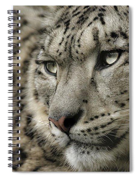 Eyes Of A Snow Leopard Spiral Notebook
