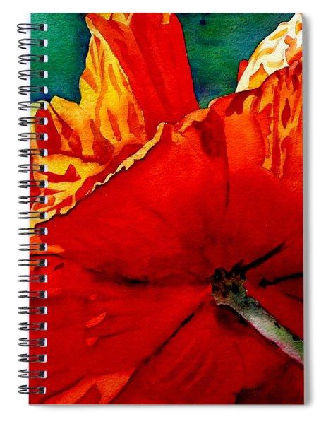 Facing The Light Spiral Notebook