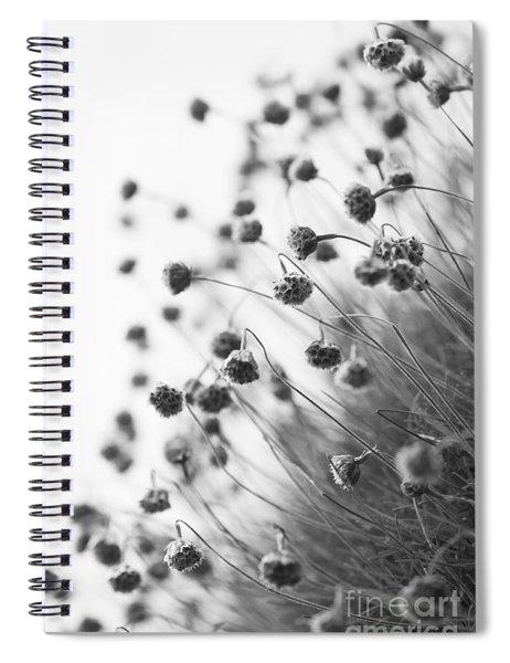 Fading Thrift Spiral Notebook