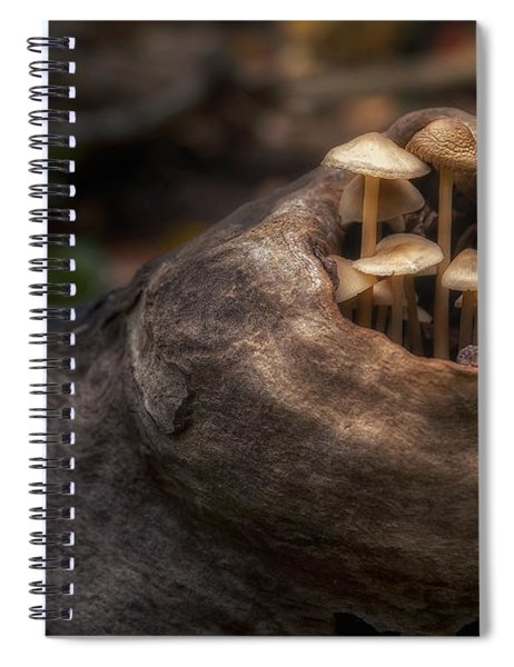 Fairie Garden Spiral Notebook