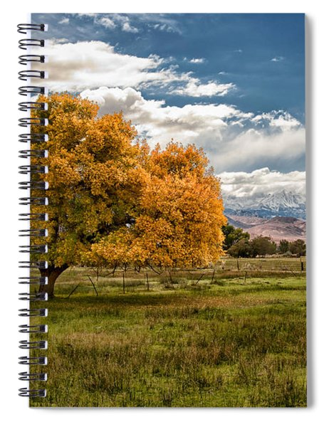 Fall And Winter Spiral Notebook