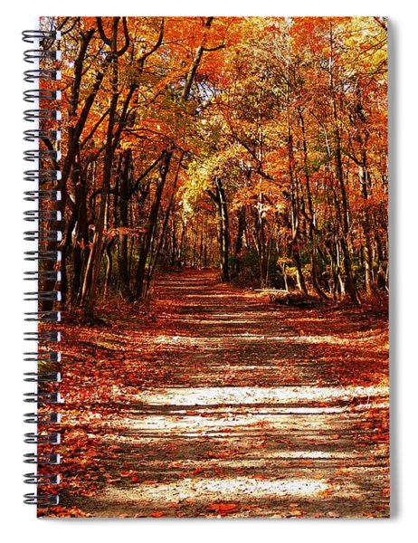 Fall At Cheesequake Spiral Notebook
