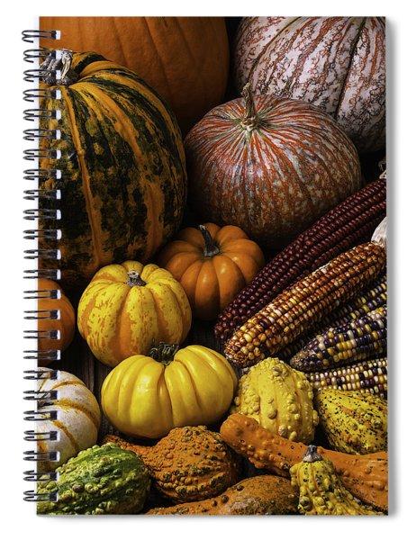 Fall Autumn Abundance Spiral Notebook