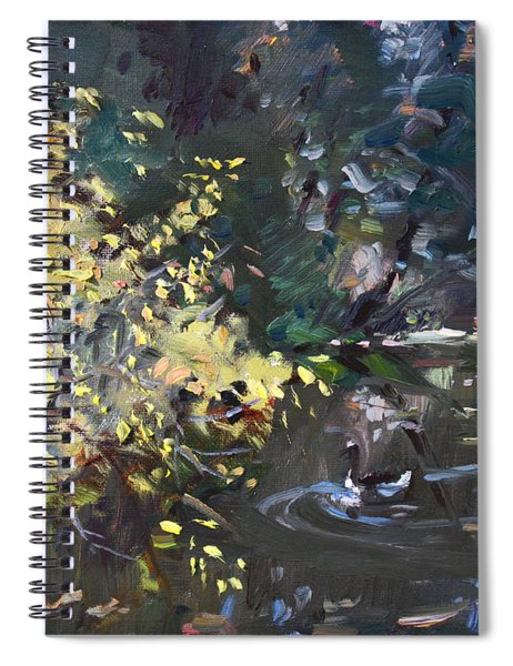 Fall By The Pond Spiral Notebook