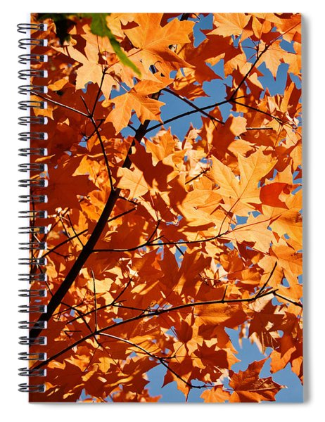 Fall Colors 2 Spiral Notebook