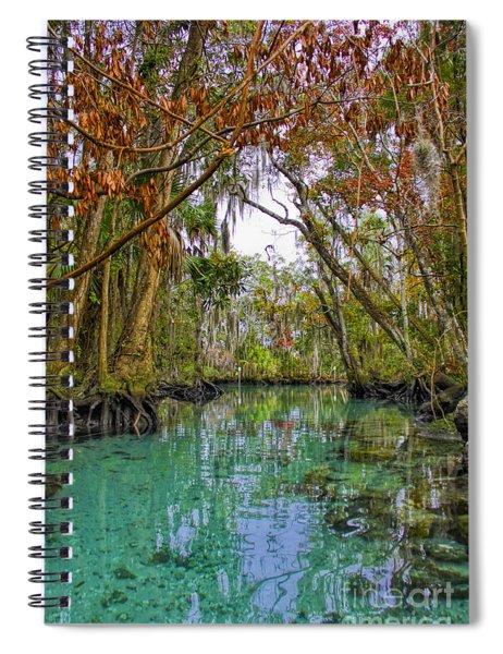 Fall Colors Along Three Sisters Spring Run Spiral Notebook