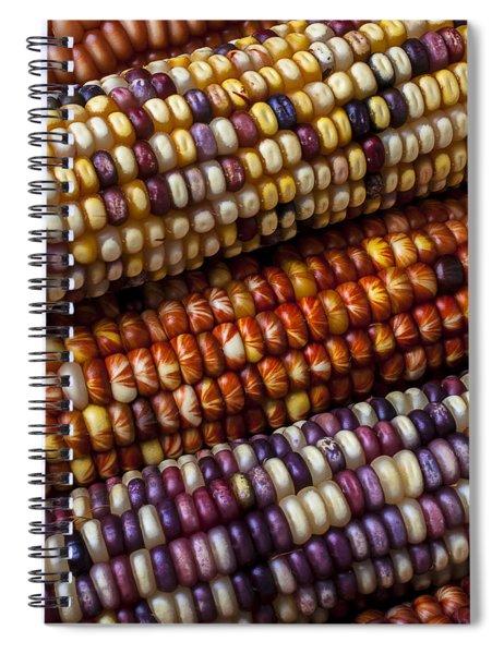 Fall Corn Spiral Notebook