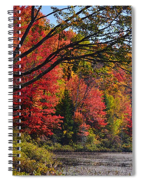 Fall Foliage At Elbow Pond Spiral Notebook