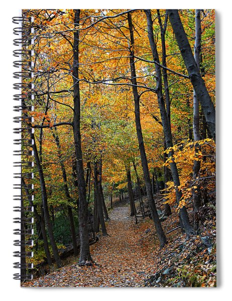 Fall Foliage Colors 03 Spiral Notebook