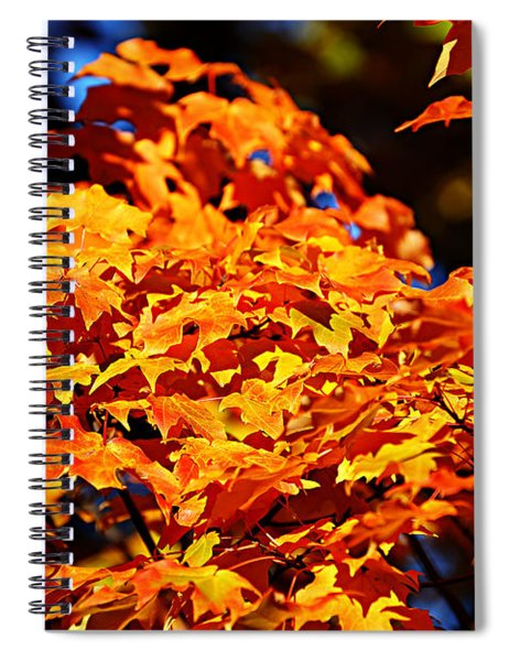 Fall Foliage Colors 16 Spiral Notebook