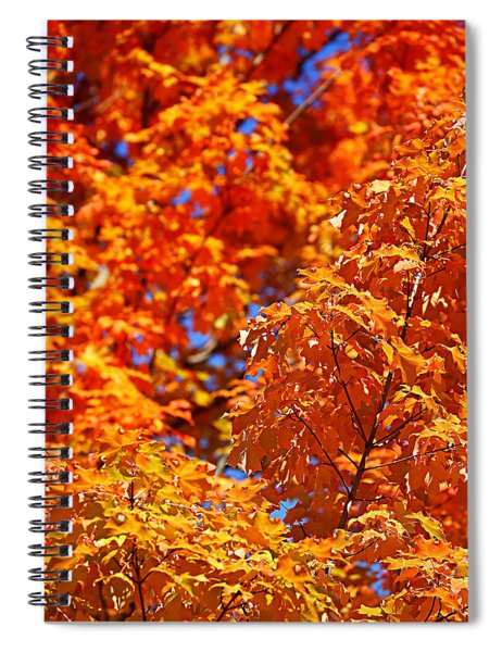 Fall Foliage Colors 17 Spiral Notebook