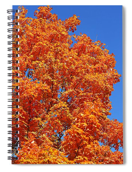 Fall Foliage Colors 18 Spiral Notebook