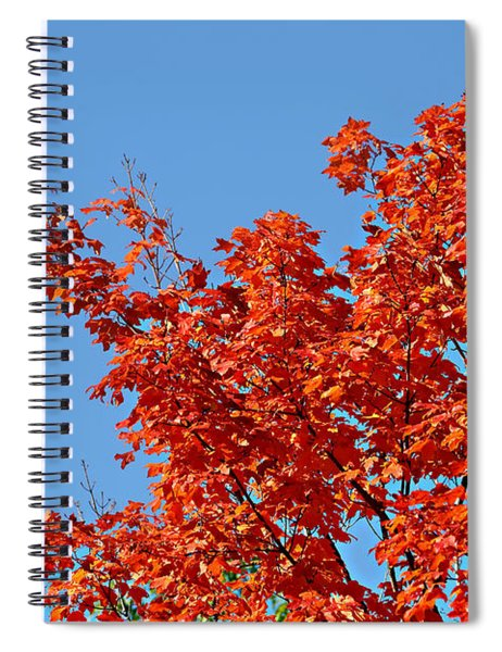 Fall Foliage Colors 20 Spiral Notebook