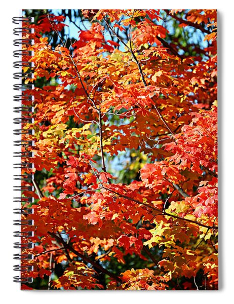 Fall Foliage Colors 22 Spiral Notebook