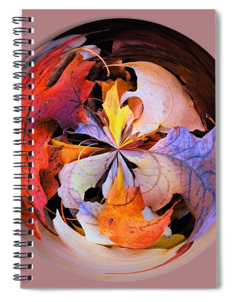 Fall Leaves Orb Spiral Notebook