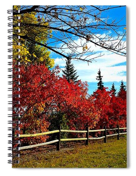 Fall Lineup Spiral Notebook