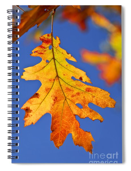 Fall Oak Leaf Spiral Notebook