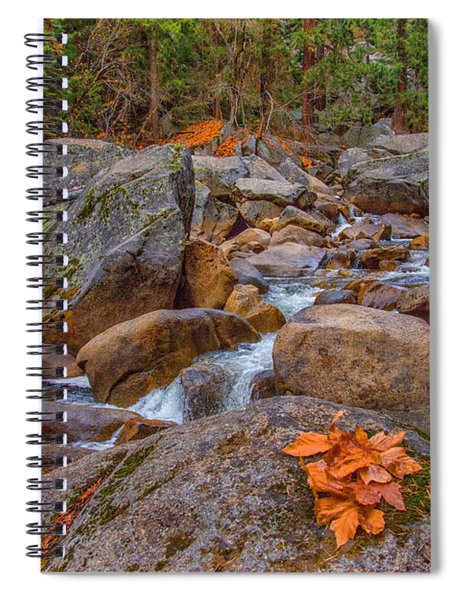 Fall On The Rocks Spiral Notebook