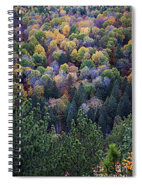 Fall Treetops At Lookout Spiral Notebook
