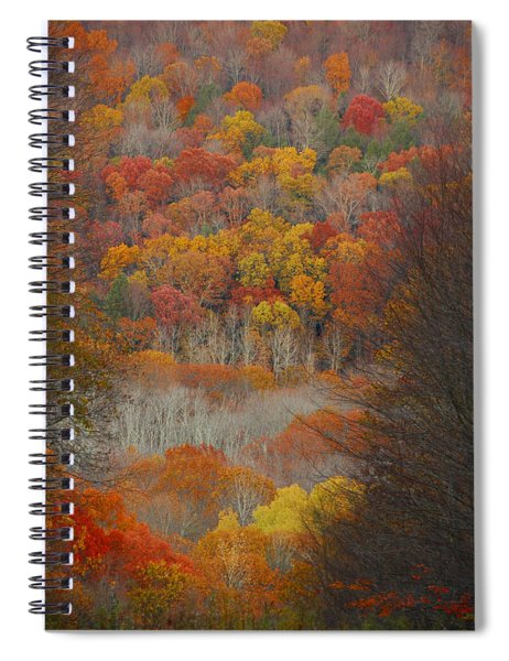 Fall Tunnel Spiral Notebook