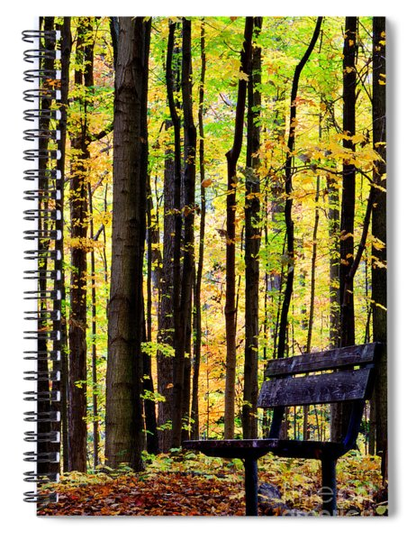 Fall Woods In Michigan Spiral Notebook