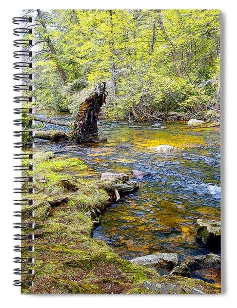 Fallen Tree In Stream Pocono Mountains Spiral Notebook