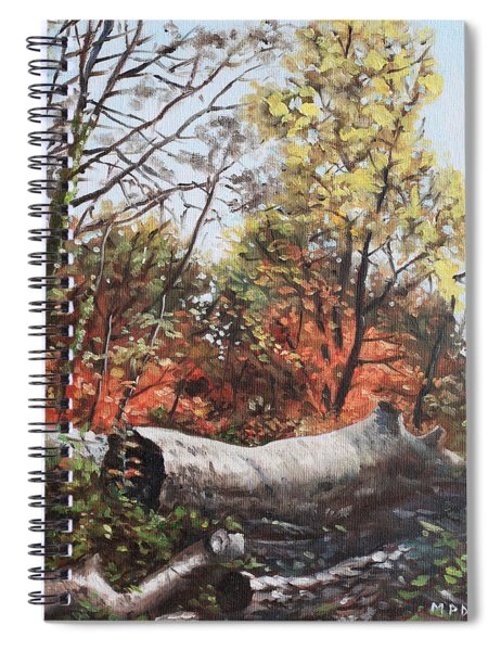 Fallen Trees On Southampton Common During Autumn Spiral Notebook