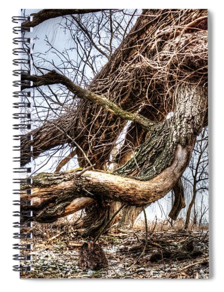 Fallen Twisted Giant Spiral Notebook