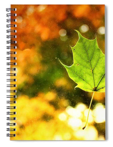 Falling Leaf Spiral Notebook