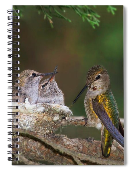 Family Love Spiral Notebook