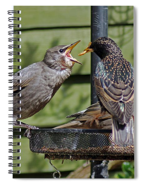 Feeding Time Spiral Notebook