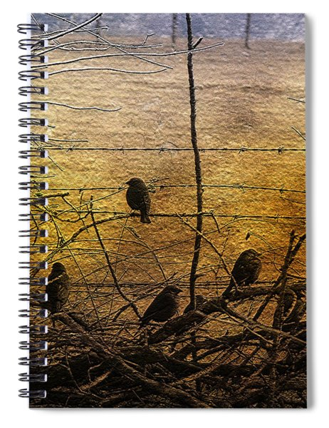 Female Brown Headed Cowbirds-featured In Wildlife-nature Photography-visions Of The Night Group Spiral Notebook