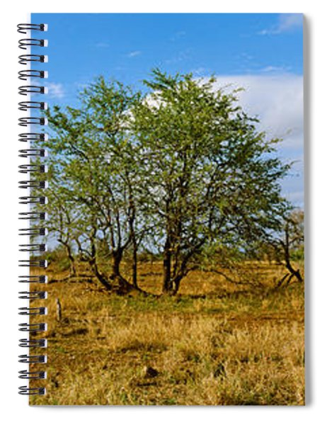 Female Giraffe With Its Calf Spiral Notebook
