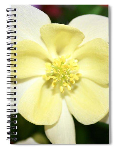 Femininity  Spiral Notebook