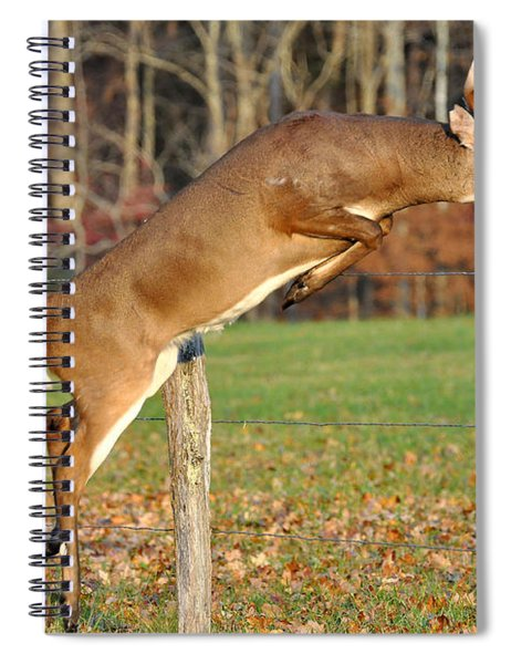 Fence Jumper Spiral Notebook