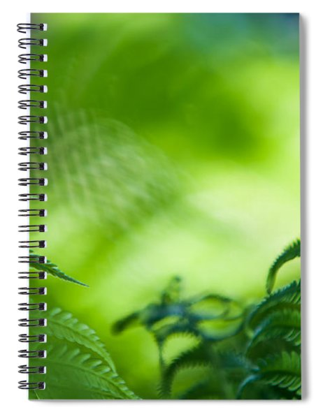 Fern Leaves. Healing Art Spiral Notebook