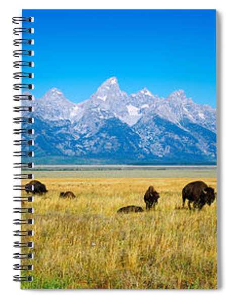 Field Of Bison With Mountains Spiral Notebook