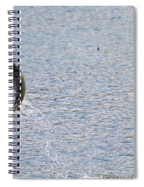 Fighting Chinook Salmon Spiral Notebook