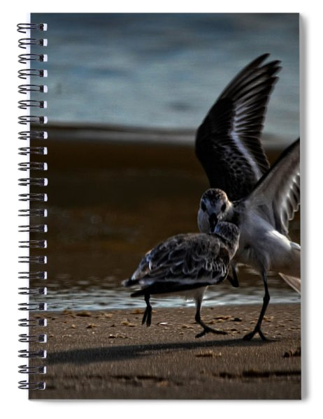 Fighting Sandpipers Spiral Notebook